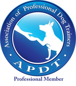 Professional Member