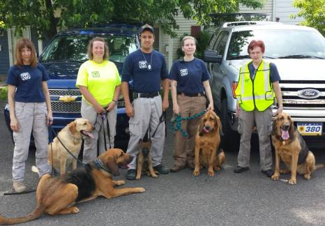K9 Averi with his handler and team
