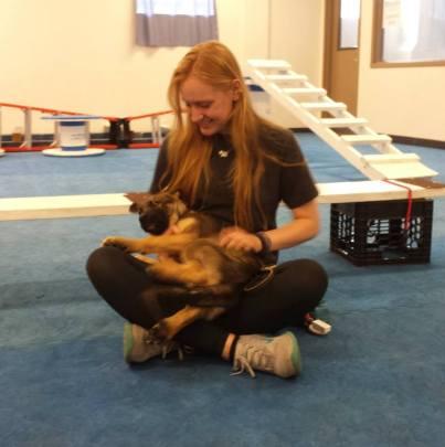 Osa at Penn Vet Working Dog Center